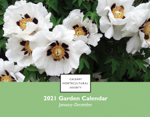 The Society 2021 calendar. The cover photos is gorgeous while peonies with black markings at the centre, making them look poppy-like. The photo was taken by Lynne Nieman