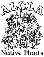 Line drawing of wildflowers below the text ALCLA