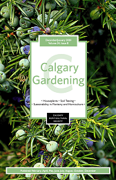 Cover of the 2020 December / 2021 January Calgary Gardening Magazine. The cover features a photo of juniper with green and blue berries